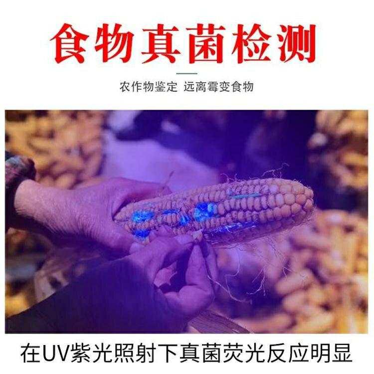 強紫光燈黃曲霉素霉菌檢測筆紫外線燈照【薇格嚴選】