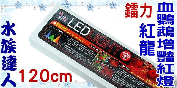 ~水族 ~鐳力Leilih~紅龍血鸚鵡增豔紅燈.120cm W~R2~40 ~LED  4