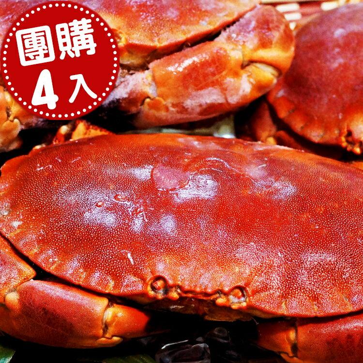 【新鮮物語】英國極地霸王蟹(麵包蟹)4隻800~1000g / 隻 ★跟臉一樣大!→ 熟凍鮮美單日熱銷百隻!!!【免運】 0