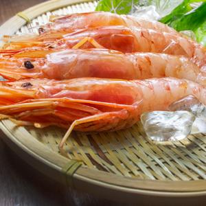 【新鮮物語】阿根廷超大天使紅蝦L1 10隻/包 (550g±10%/包)