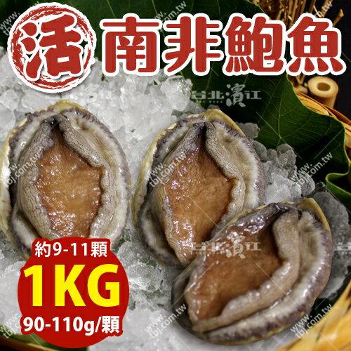 築地空運直送【台北濱江】南非活鮑魚90-110g/顆_1kg裝(約9-11顆)
