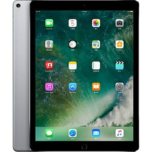 APPLE IPAD PRO 12.9 512G WIFI