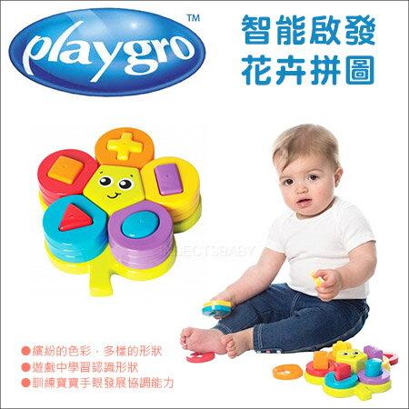 ✿蟲寶寶✿【澳洲Playgro】學習認識形狀、色彩智能啟發花卉拼圖