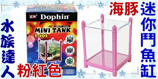 ~水族 ~海豚Dophin~MINI TANK 迷你鬥魚缸.粉紅色~壓克力製鬥魚缸  桌上