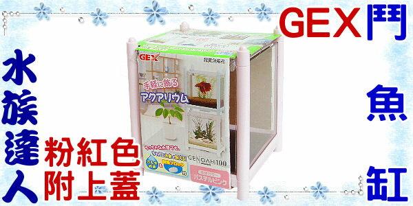 【水族達人】日本GEX《鬥魚缸.粉紅色》迷你、小巧、時尚!
