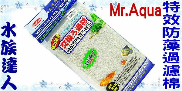 【水族達人】【濾材】水族先生Mr.Aqua《特效防藻過濾棉》濾棉 ☆除磷酸PO4☆