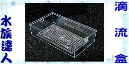 便當盒 多層式培菌滴流槽專用
