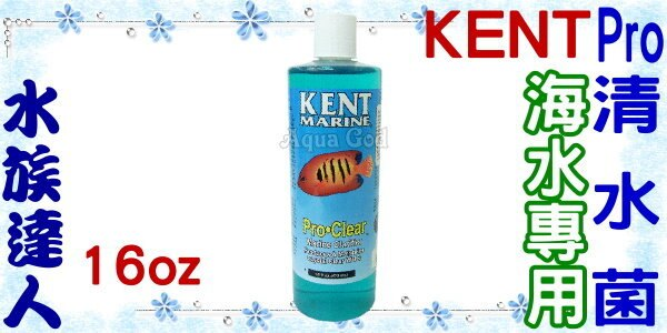 ~水族 ~美國KENT~Pro清水菌 海水  .16oz~保持魚缸水質清澈!