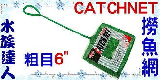 【水族達人】水族先生Mr.Aqua《CATCHNET 撈魚網(粗目)6吋》養魚必備品!