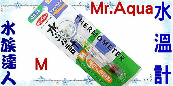 【水族達人】水族先生Mr.Aqua《水溫計.M.QB28》玻璃溫度計 超精準測量!