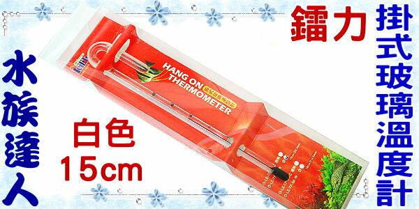 【水族達人】鐳力Leilih《掛式玻璃溫度計.白色.15cm》超精準測量!