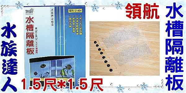 【水族達人】【隔離網】領航《水槽隔離板1.5尺*1.5尺(寬*高) 》大小標準魚缸適用