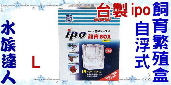 【水族達人】台製 ipo《自浮式飼育繁殖盒L(10cm)》隔離箱/產仔箱/產卵盒/產卵箱