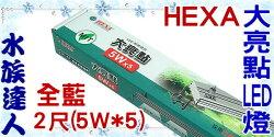 【水族達人】海薩 HEXA《600 大亮點 LED燈 (5W*5) 2尺/全藍》60cm 跨燈 56~64cm魚缸適用