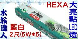 【水族達人】海薩 HEXA《600 大亮點 LED燈 (5W*5) 2尺/藍白》60cm 跨燈 56~64cm魚缸適用