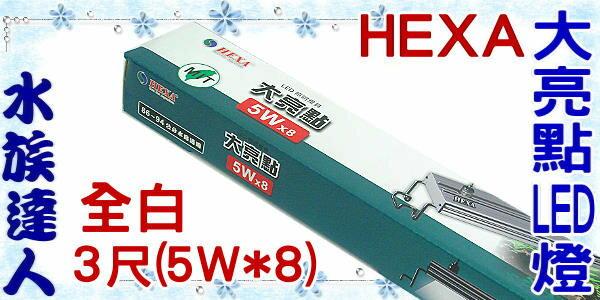 【水族達人】海薩 HEXA《900 大亮點 LED燈 (5W*8) 3尺/全白》90cm 跨燈 86~94cm魚缸適用