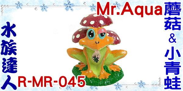 ~水族 ~~造景裝飾~水族先生Mr.Aqua~蘑菇  小青蛙.R~MR~045~魚缸飾品