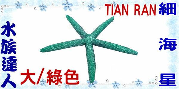 ~水族 ~~裝飾品~TIAN RAN~細海星  大  綠色  1473~S~海星  造景裝