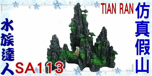 【水族達人】【裝飾品】TIAN RAN《仿真假山 SA113》假山/石山/岩山/漁翁/小樹/
