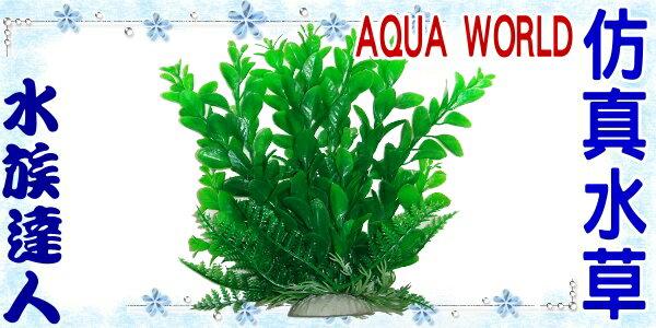 【水族達人】【造景裝飾】水世界AQUA WORLD《精緻仿真水草.小.092172》假水草