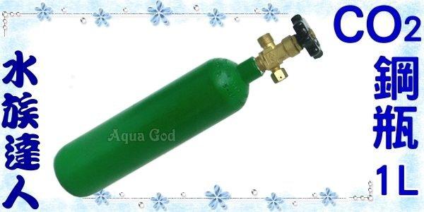 【水族達人】《全新CO2鋼瓶1L》水草缸必備品!