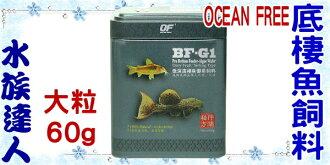 【水族達人】新加坡OCEAN FREE 傲深《BF-G1 底棲魚御用飼料 FF1026(大粒) 60g》 仟湖秘方/底棲魚/異形/OF/of