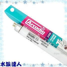 【水族達人】【T5燈管】阿卡迪亞Arcadia《T5新超亮海水鹵素燈管.24W》超明亮!