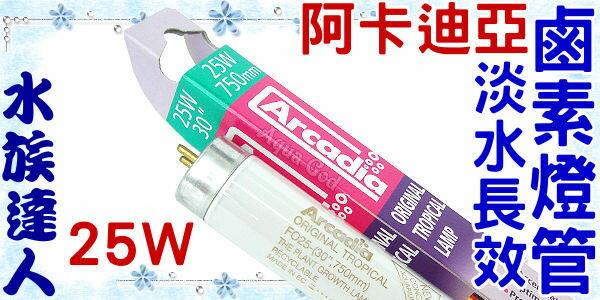 【水族達人】阿卡迪亞Arcadia《T8淡水長效鹵素燈管.25W》超明亮!