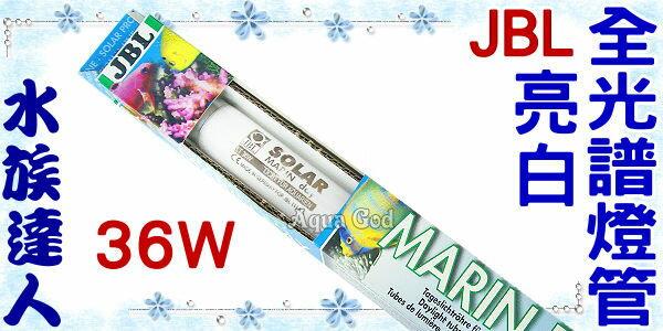 ~水族 ~JBL~Marin Day亮白全光譜燈管15000K.36W~T8燈管 超明亮!