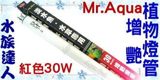 【水族達人】水族先生Mr.Aqua《T8淡水魚/水草專用增豔植物燈管.紅色30W》可增進水草及魚隻顏色