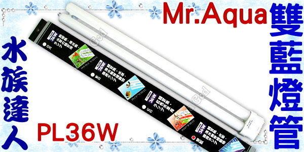 ~水族 ~水族先生Mr.Aqua~雙藍燈管.PL36W~超明亮!