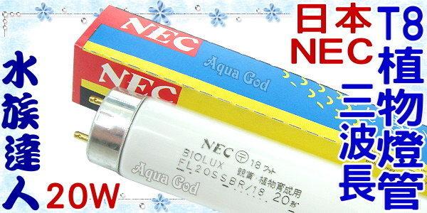 【水族達人】日本NEC《T8三波長植物燈管.20W》植物育成觀賞魚專用!