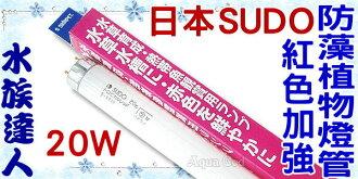 【水族達人】日本SUDO《紅色加強防藻植物燈管3500K.20W》超明亮!