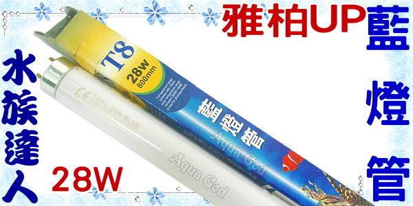 【水族達人】雅柏UP《T8藍燈管.28W》知名品牌、大眾價格!