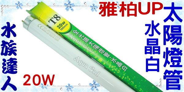 【水族達人】雅柏UP《T8全光譜太陽燈管.水晶白.20W》知名品牌、大眾價格!
