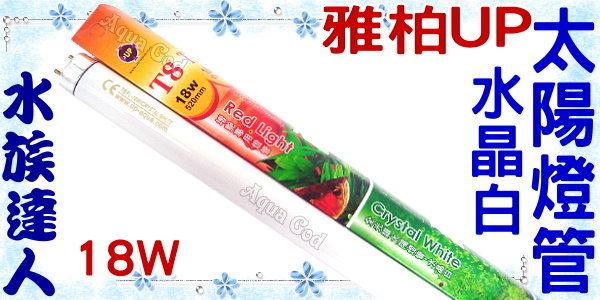【水族達人】雅柏UP《T8全光譜太陽燈管.水晶白.18W》知名品牌、大眾價格!