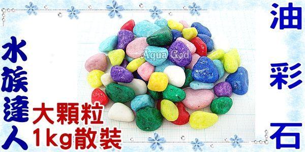 【水族達人】彩色的石頭《油彩石.大顆粒1kg散裝》裝飾、舖缸,最美麗的裝飾!