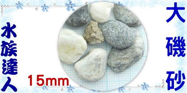 【水族達人】【底砂】《大磯砂散裝1kg.3分(約15mm)》水草造景/美觀/大方!