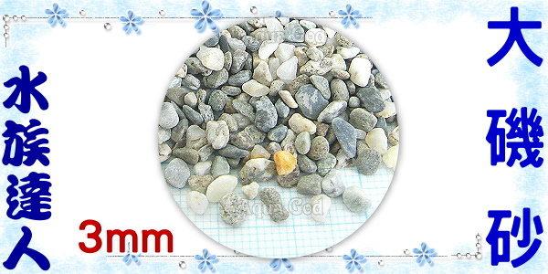 【水族達人】【底砂】《大磯砂散裝1kg.7厘(約3mm)》水草造景/美觀/大方!