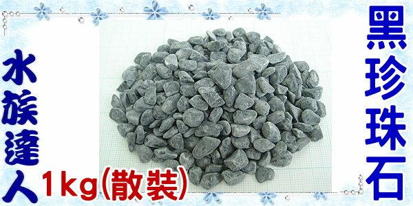 【水族達人】【底砂】《黑珍珠石.1kg(散裝)》砂子/砂石/石頭/造景的好幫手!