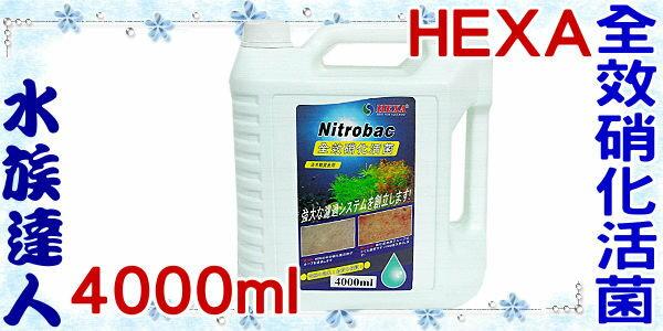 ~水族 ~海薩 HEXA~全效硝化活菌.4000ml~硝化菌 4L 養魚 品!