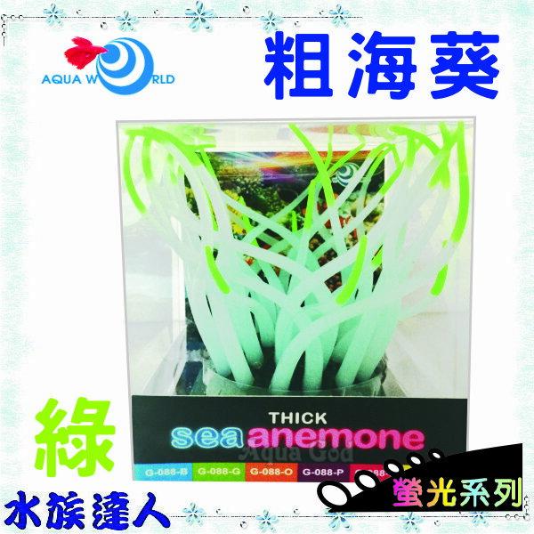 ~水族 ~~造景裝飾~水世界AQUA WORLD~sea anemone 粗海葵 螢光綠