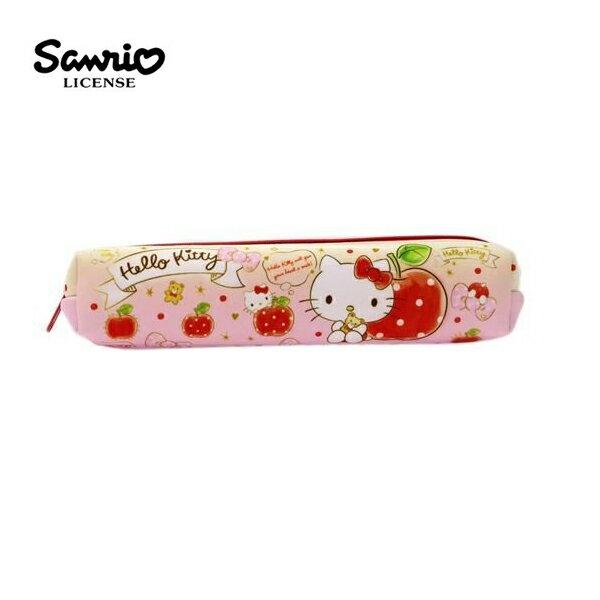 ~ ~凱蒂貓 長型 防震 筆袋 鉛筆盒 Hello Kitty 三麗鷗 Sanrio ~