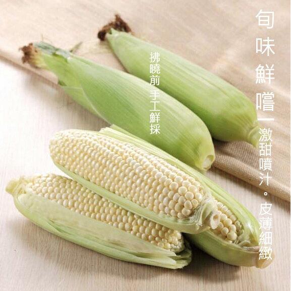 白美人牛奶水果玉米