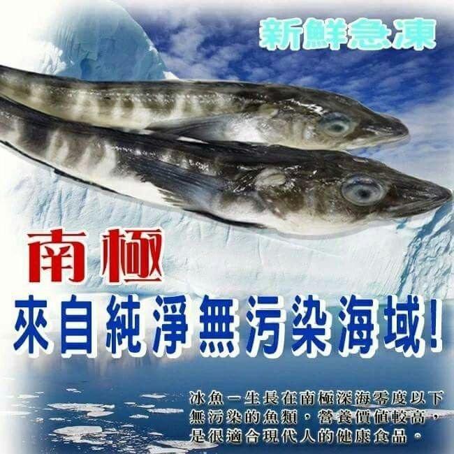 ~台南祥發興食尚館~極地美味南極冰魚 200  250G 包冰20%