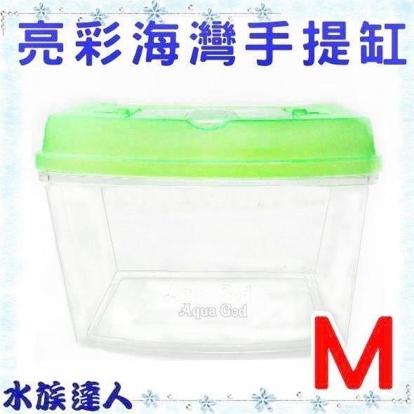 推薦【水族達人】【飼育箱】《亮彩海灣手提缸 M 中型 C-CE-04》飼育盒 藍 綠 2種顏色隨機出貨 甲蟲 獨角仙