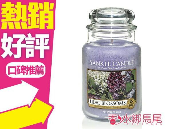 YANKEECANDLE香氛蠟燭LILACBLOSSOMS紫丁花623g◐香水綁馬尾◐