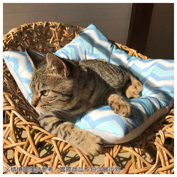 接觸涼感 寵物睡墊 N COOL Q 19 圓 NITORI宜得利家居 9