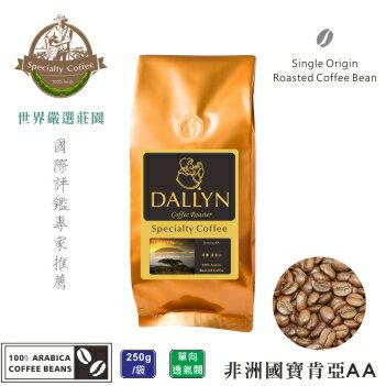 【DALLYN 】肯亞AA Kenya AA (250g/包) | 世界嚴選莊園咖啡豆