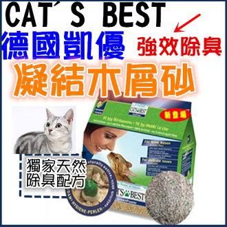 +貓狗樂園+ CAT\